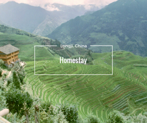 Homestay Longji China