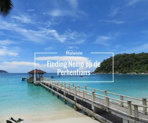 Finding Nemo op de Perhentians